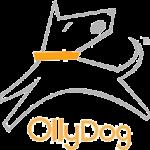 OllyDog hundprodukter och hundsport